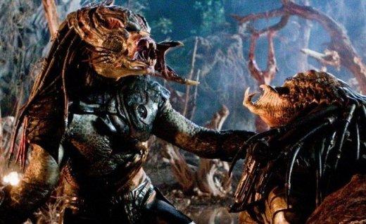 predators Predators predators 2
